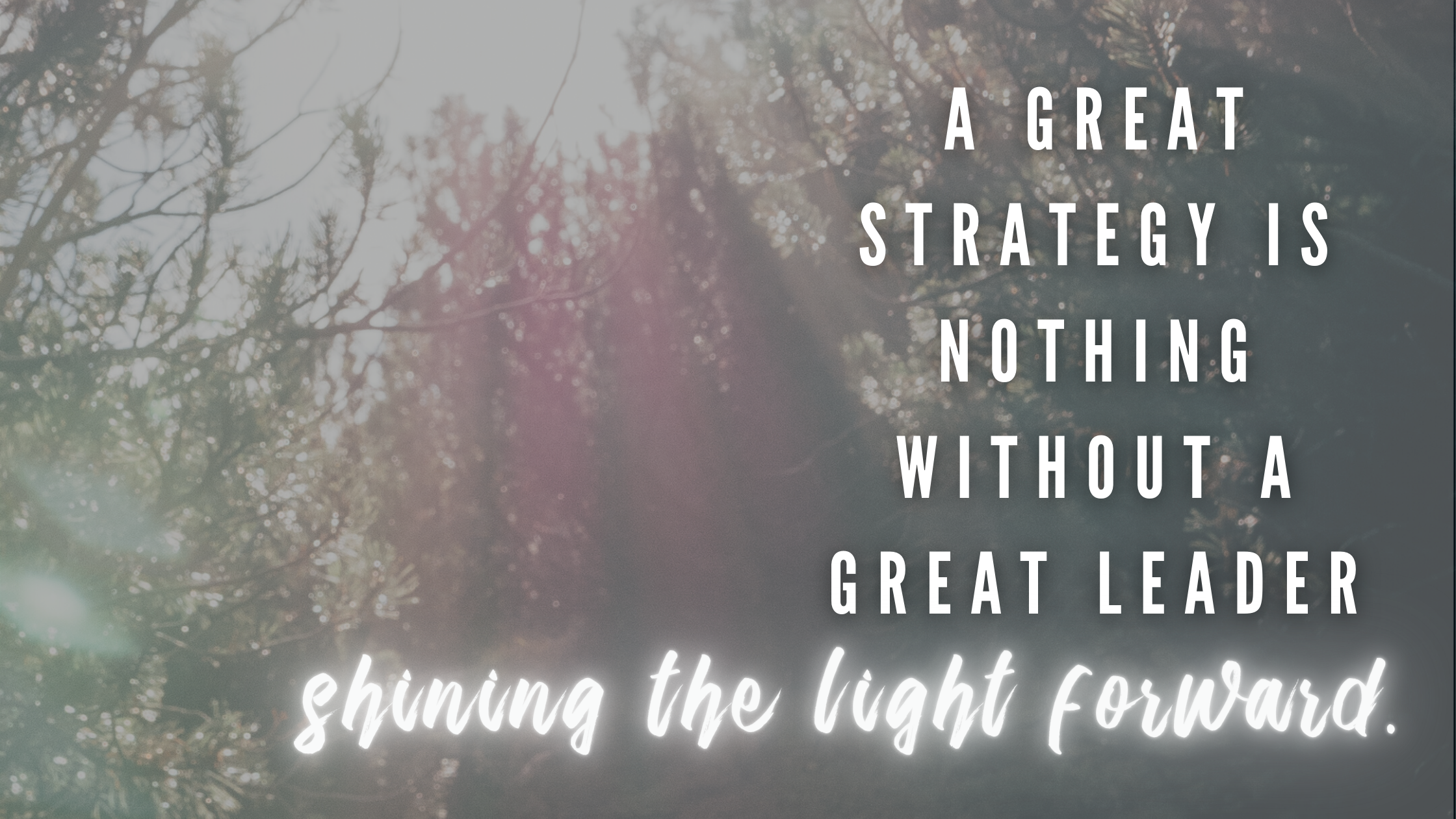 A great strategy is nothing without a great leader shining the light forward. (2)